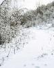 foto winter_44