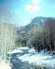 foto winter_46
