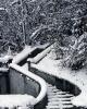 foto winter_50