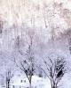 foto winter_53