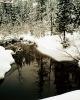foto winter_54