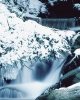 foto winter_62