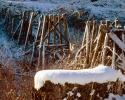 foto winter_64