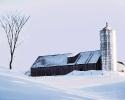 foto winter_65