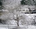 foto winter_67