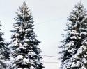 foto winter_75