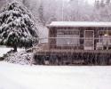 foto winter_86