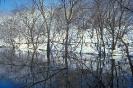 foto winter_8