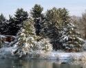 foto winter_90