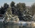 foto winter_94