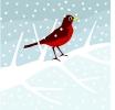 winter_211