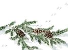 winter_261
