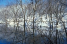 winter_318