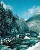 winter_348