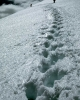 winter_366