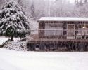 winter_389