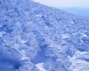 winter_443