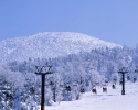 winter_444