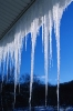 winter_461