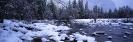 winter_470