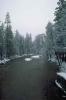 winter_479