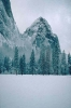 winter_487