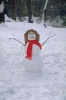 winter_497