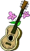 gitaar_80