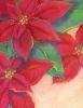 bloemen_104