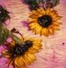bloemen_113