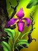 bloemen_136