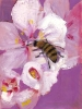 bloemen_142