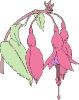 bloemen_144