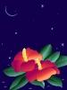 bloemen_145
