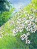 bloemen_158