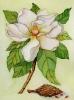 bloemen_162