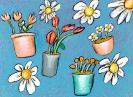bloemen_168