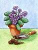 bloemen_170