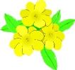 bloemen_177