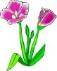 bloemen_188