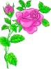 bloemen_210