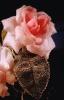 bloemen_281