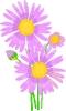 bloemen_298