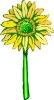 bloemen_309