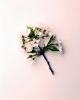 bloemen_312