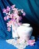 bloemen_324