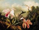 bloemen_40