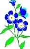 bloemen_440