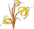 bloemen_441