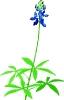 bloemen_463